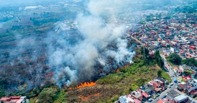 Atendidos 30 incendios forestales y en establecimientos de Córdoba