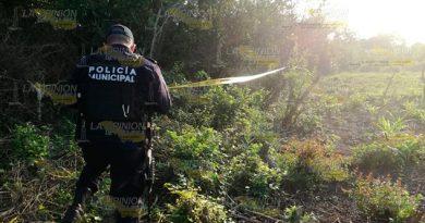 Cadáver descarnado encontrado en colonia de Tuxpan, es de una mujer