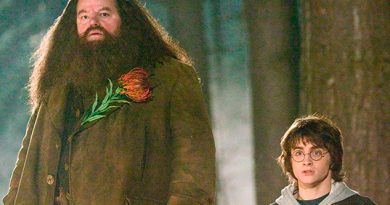 """""""Hagrid"""" de Harry Potter padece enfermedad que lo deja en silla de ruedas"""