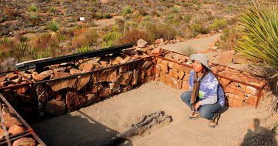Las mujeres y los fósiles, una amorosa relación de dos siglos