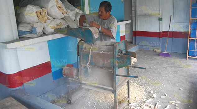 Productores de granos logran precios de garantía