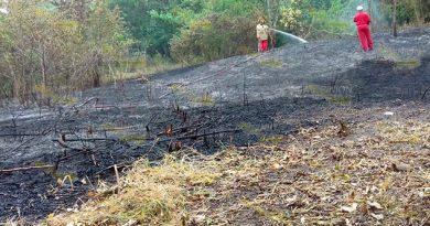 Prohíbe Protección Civil realizar quemas en Cerro Azul y la región