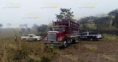 A la alza los casos de abigeato en Tihuatlán