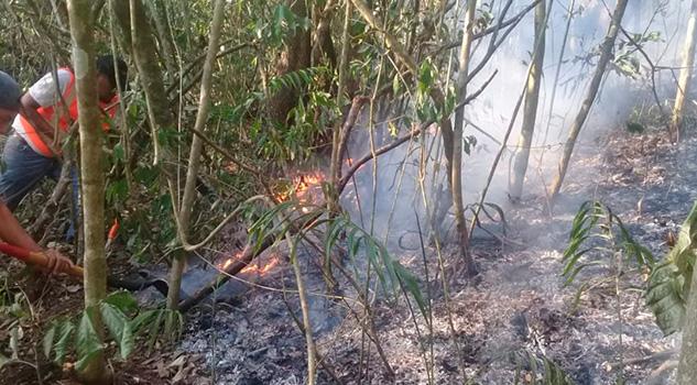 Activos en Veracruz, 3 incendios forestales