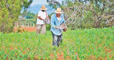 Advierten altas temperaturas en la Sierra del Totonacapan
