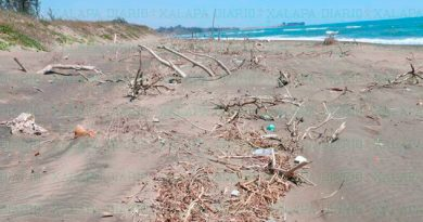 Bajo número de visitantes a playas veracruzanas esta Semana Santa