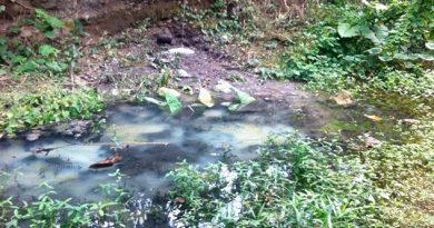 Ciudadanos denuncian arroyo contaminado en Cerro Grande Escolín