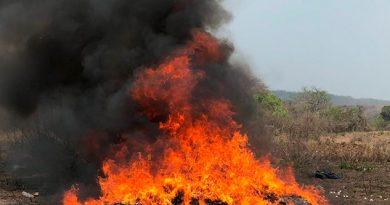 Destruye FGR más de 282 kilos de estupefacientes en Veracruz