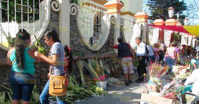 Domingo de Ramos en Álamo