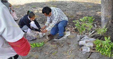 Fomentan cuidado del medio ambiente en niños y jóvenes de Tihuatlán