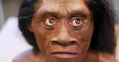 Homo luzonensis el ancestro humano que vivió aislado y se extinguió misteriosamente