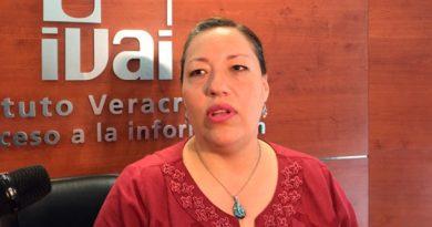 Sueldos de funcionarios de Veracruz deben transparentarse: IVAI