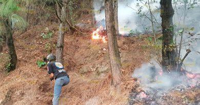 Tras incendio forestal descubren tala ilegal en Ahuazotepec, Puebla