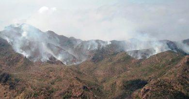 Van 800 hectáreas afectadas por incendio en Alto Lucero