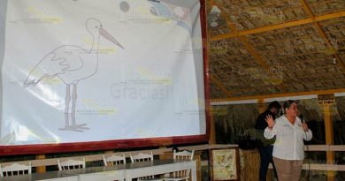 Aves en riesgo de extinción; participan activistas en conteo mundial