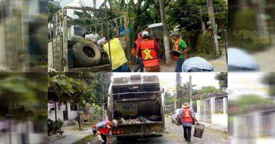 Combate frontal contra vector de dengue y zika en Álamo