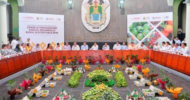 Impulsa Veracruz CC para inhibir corrupción en proyectos productivos