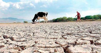Incrementa a 74 los municipios afectados por sequía en Veracruz