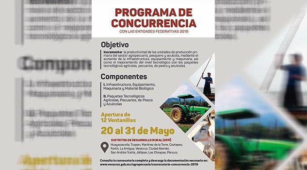 Publican convocatoria para Programa de Concurrencia en el estado de Veracruz
