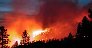 Reporta PC incendio forestal en Uxpanapa, Veracruz