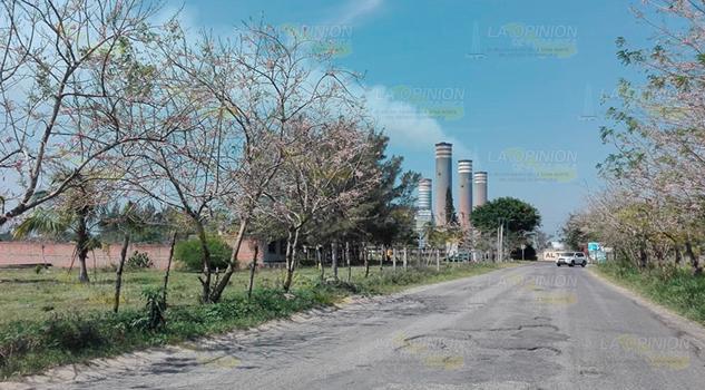 Vigentes proyectos para generación electricidad en Tuxpan