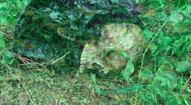 Encuentran un cráneo a orillas de la carretera Martínez - Puente II