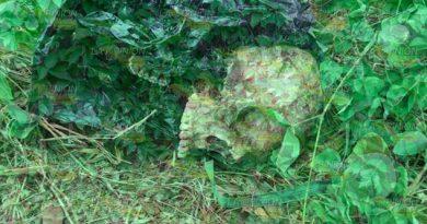 Encuentran un cráneo a orillas de la carretera Martínez – Puente II