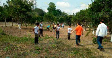 Entregan a escuelas de Tuxpan más de mil árboles