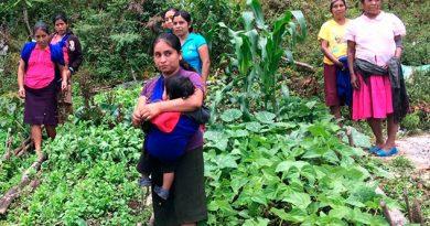 Mixtla de Altamirano, territorio estatal entre los más pobres del mundo