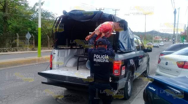 Policía captura a presunto ladrón de Aguacatitla
