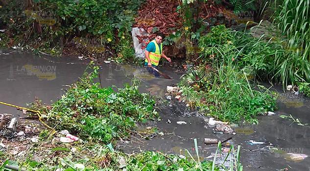 Retiran basura del arroyo Tantala en Cerro Azul