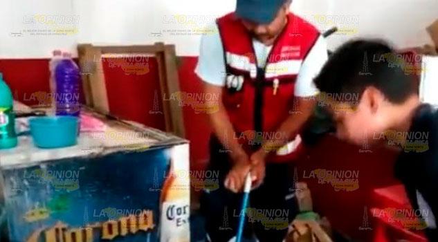 Bomberos capturan a una víbora en una cantina de Huejutla