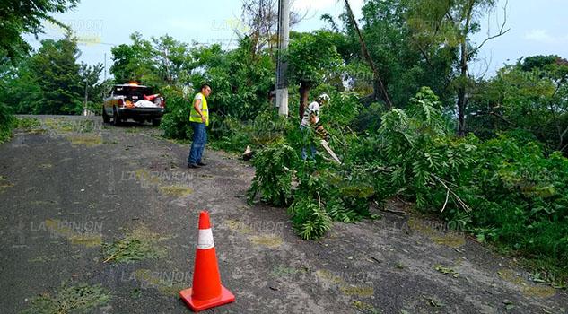 Comunidades de Coatzintla se quedaron sin luz varias horas