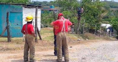 Incendian pastizal en Tuxpan, por fortuna no se expandió