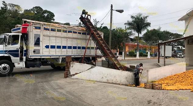 Producción de cítricos disminuirá hasta 70% en Tihuatlán