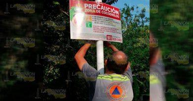 Alerta por cocodrilos en arroyos de Poza Rica