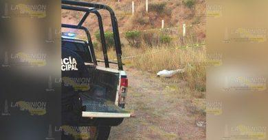 Encuentran muerto a vecino de la comunidad Chiliteco