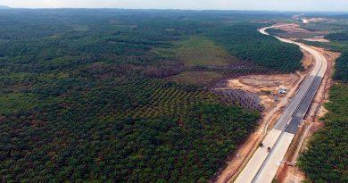 Indonesia trasladará su capital a la isla de Borneo