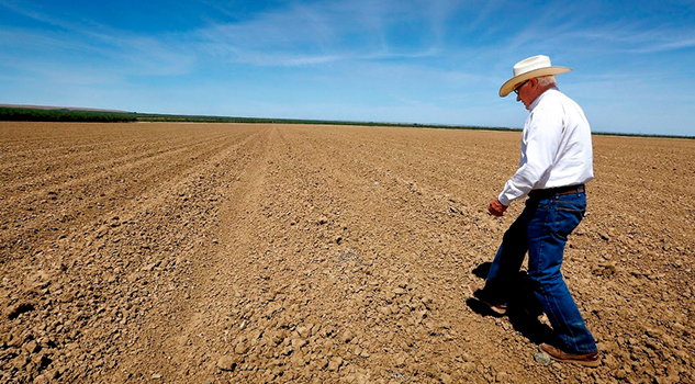 Siete municipios de Veracruz con declaratoria de desastre por sequía