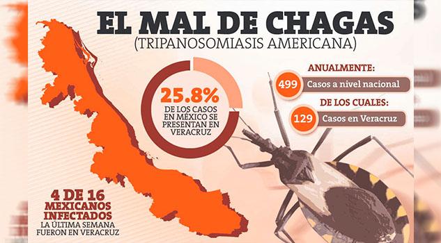 Veracruz, infestado del mal de chagas