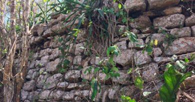 Bajo la selva descubren pirámide maya en X'baarun