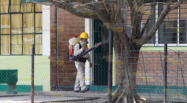 """Dengue en colonias """"fifí"""" de Poza Rica"""