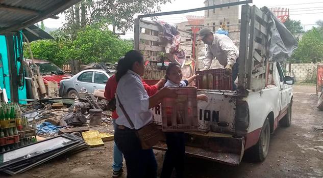 Piden campaña de fumigación en Cerro Azul