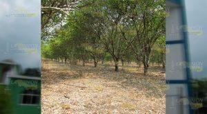 Racionan el agua en comunidades de Álamo