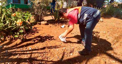 Reportan envenenamiento masivo de perros y gatos en Comapa, Veracruz