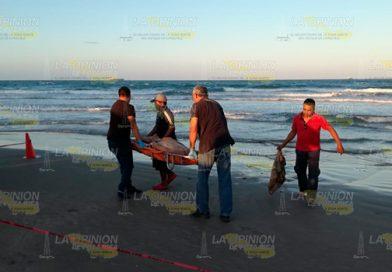 Chilango muere ahogado en playas de Tuxpan
