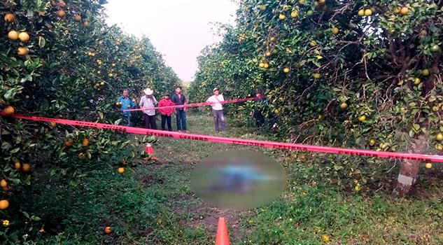 ¡Anciano agricultor del ejido La Concepción, muere ante a su hijo!