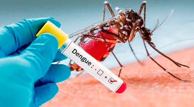 15 muertes por dengue en Veracruz; Primer lugar nacional