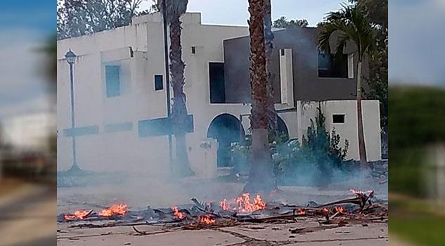 Cae rayo en palmera y provoca incendio en fraccionamiento de Martínez de la Torre