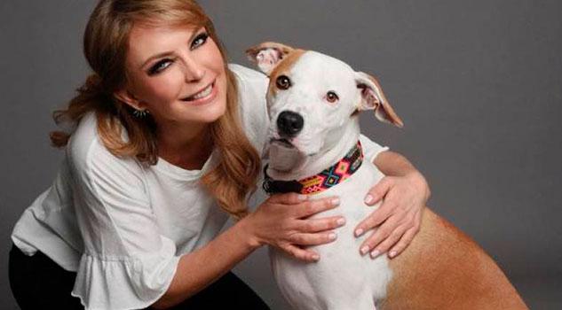 Laura Flores, de actriz a especialista en peluquería canina
